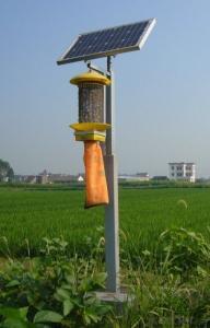 Insect   Killing   Light   JMTS-002