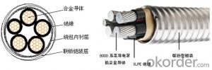 Interlocked armored alloy cables armored 90 ℃XLPE insulated single