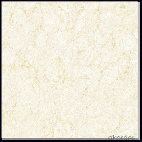 Beautiful Products + Polished Porcelain Tile + Low Price 8163