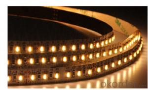 LED Strip Light DC 12V/24V,SMD 3528-120 LEDS PER METER  IP65 PU GLUE OUTDOOR