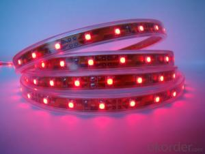 Led Strip Light DC 12/24V / 5V  SMD 5050 RGB  30 LEDS Per Meter Outdoor IP65 PU Glue