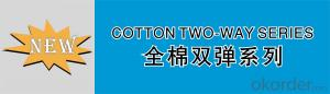 COTTON TWILL TWO WAY STRETCH S0085/(50/2+40D)×(50/2+40D)