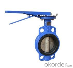 Lug Type Butterfly Valve Without Pin Ductile Iron DN110