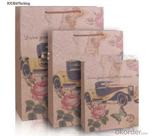 Hot sale new arrival custom printed kraft paper bag