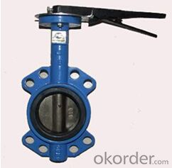 DN100 Wafer Type Butterfly Valve BS Standard