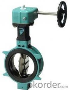 DN800 Turbine Type Butterfly Valve with Hand wheel BS Standard