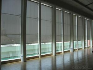 New Style Chain Control Roller Blinds for Indoor Sunshade