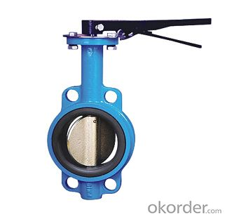 DN80 Wafer Type Butterfly Valve BS Standard