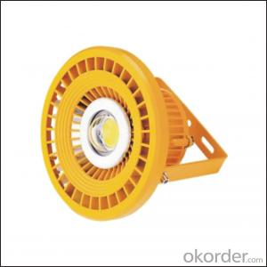 Customized High Power LED Explosion-proof Light