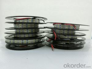 15mm width 2900Lm per meter double row SMD 5630 LED strip 2700-7000K