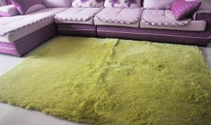Carpet for 2015 Long Pile Shaggy Green Carpet