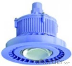 LED Explosion Proof Lamp Series    POWER:5W-18W
