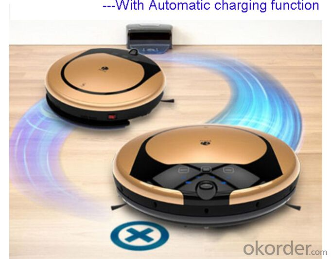Intelligent Robotic Vacuum Cleaner for Wet & Dry