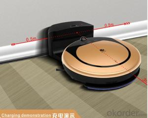 Intelligent Robotic Vacuum Cleaner for Wet & Dry