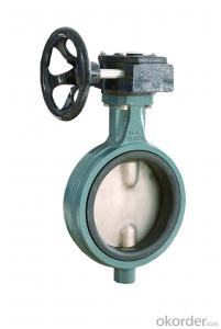 The Gear Wafer Butterfly Valve DN25-DN1200