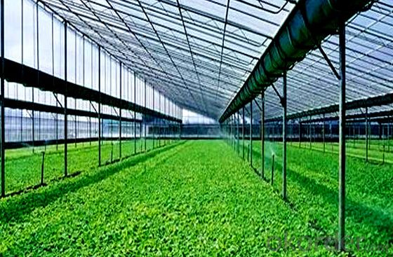 Plastic arch greenhouse for sale from big greenhouse manufacturer in China