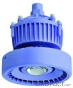 LED Explosion Proof Emergency Light Series    POWER:5W-18W