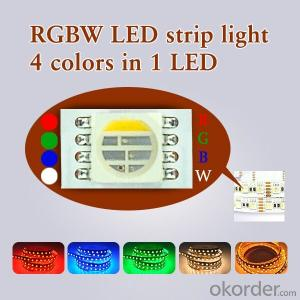 Waterproof DC 24V RGBW Flexible Led Strip 4 Colors in 1 Led