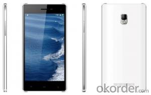 5 Inch IPS HD Screen Quad-Core Dual-SIM Android 4.4