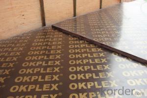 Film Faced Plywood Brown / China & Dubai  / Brand: Okplex / Fresh Poplar Core / WBP / 4'x8'x18mm