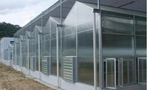 Commercial aeroponic greenhouse for vegetable fruit