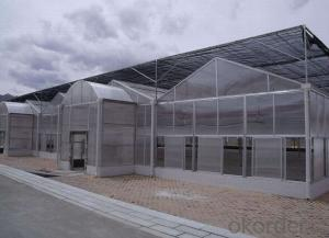 Multi-span polycarbonate green house for plant