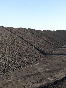 Nut Coke of Size 20-40mm for Ferro Alloy Plants