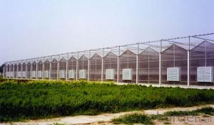 Glass Sheet Greenhouses for sales with low price