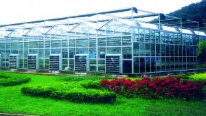 Agricultural glass greenhouse for vegetable and flower