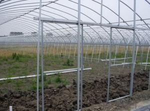 Strong structure film greenhouse for sale