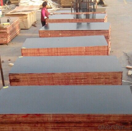 Formwork Plywood with Favorable Price used in Construction Building