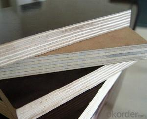 High Quality Film  Plywoods with Favorable Price