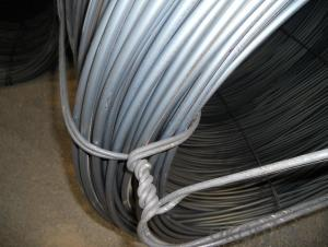Wire Rod , Hot Rolled Carbon Steel Wire Rod SAE1008