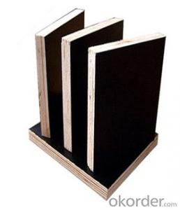 Film  Plywood  with High Quality based on  Competitive Price for Formwork