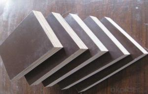 High Quality Plywood with Low Price for Steel Frame Formwork
