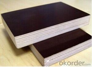 Film  Plywood with Favorable Price Good Quality