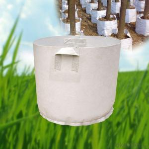 Good Quality Garden Pots Planters for City Landscaping