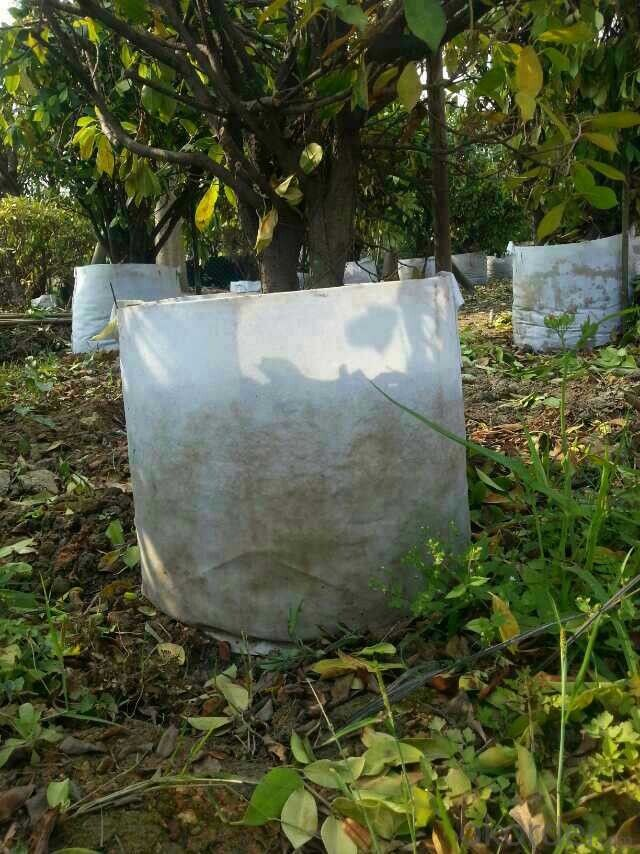 Landscaping  Durable Garden Pots Planters PE