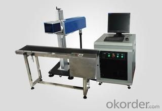 Co2 Online Flying Laser Marking Machine CNBM