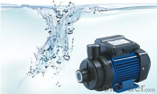 Hot Sale Swimming Pool Pump,SPA Water Pump