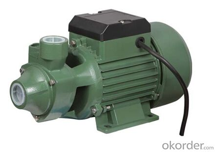 0.5HP QB60 Vortex Electric Swimming Pool Pump