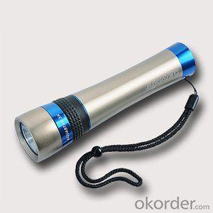 Holding a diving flashlight for deep sea diving