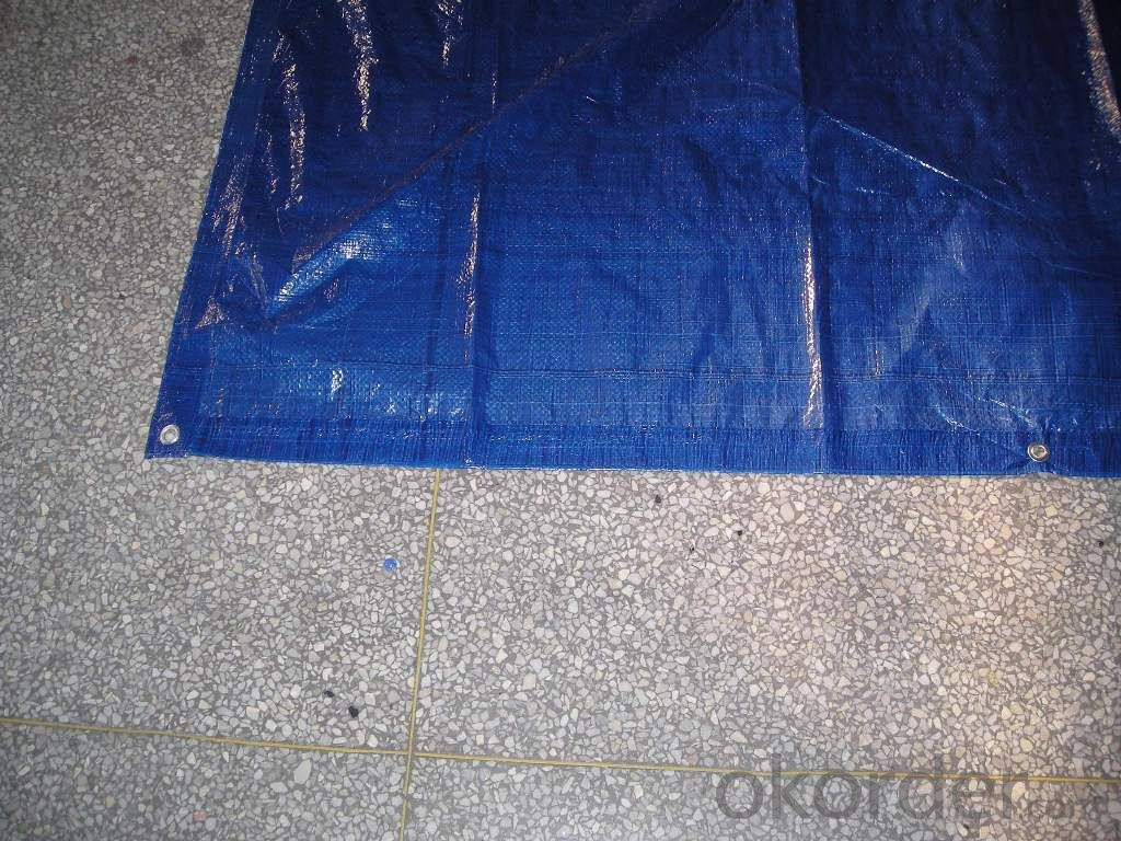 PE tarpaulin fabric for truck cover usage with 3year guarantee