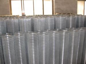 PVC Coated or Hot Dipped Galvanized Welded Wire Mesh( ISO9001 Manufacturer)