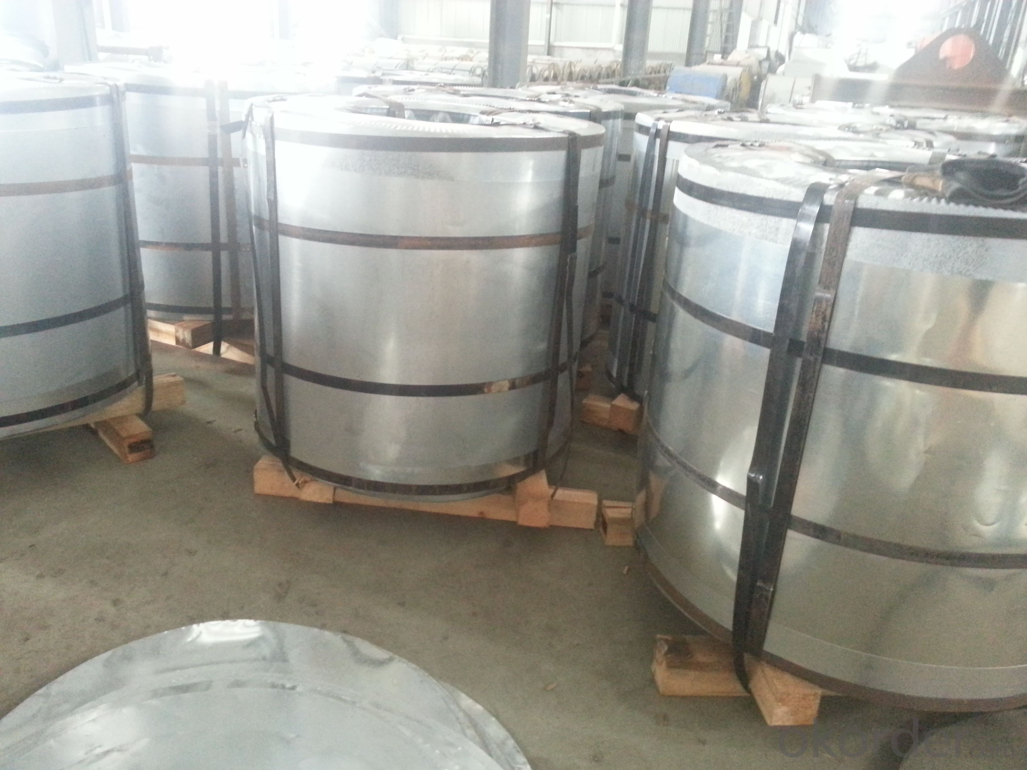 PRE-  PAINTED  GALVANISED  STEEL   COILS