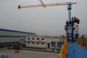 FUXIANG Tower Cranes TC50103S(Top-Slewing)