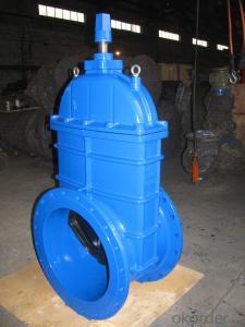 Ductile iron gate valve