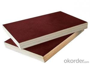 Marine Plywood  Film Faced plywood with good quality and better price