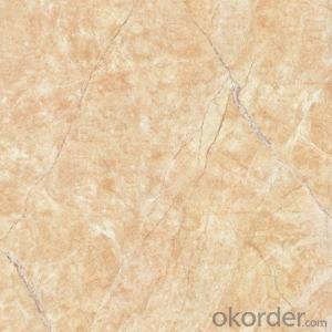 Glazed Porcelain Floor Tile 600x600mm CMAX-TC6021P