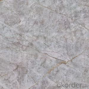 Glazed Porcelain Floor Tile 600x600mm CMAX-S6688
